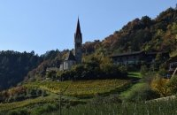 sommer-herbst-2015-177_2349x1566